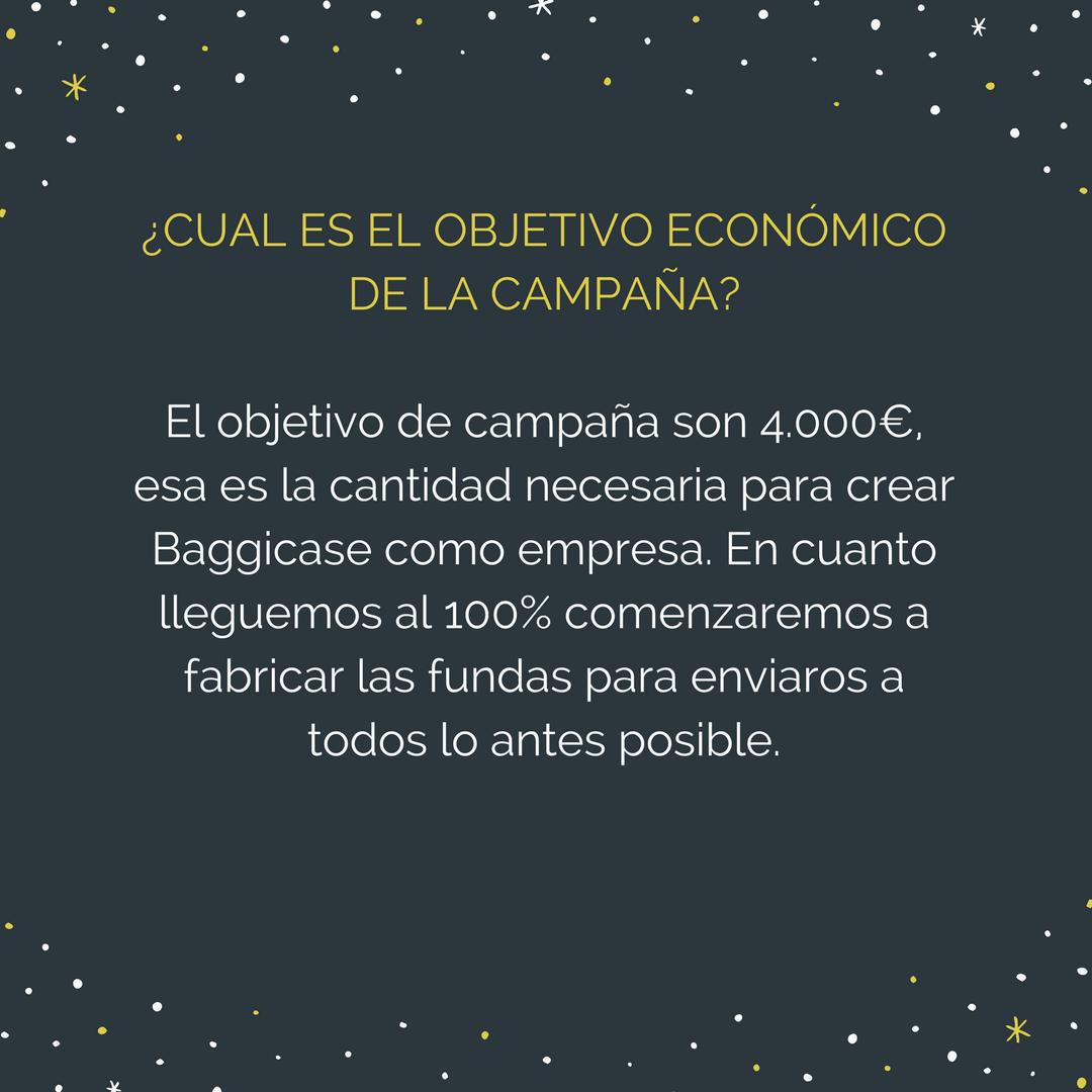 grafismo-dudas-campaña-crowdfunding-baggicase
